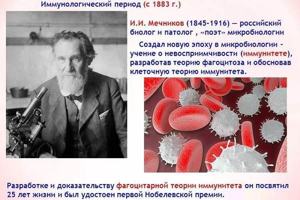 Нобелевский-лауреат-ученый-Илья-Ильич-Мечников-Биография-и-труды-4